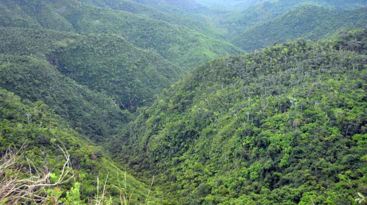 black-river-gorges-slider-romantic-travel