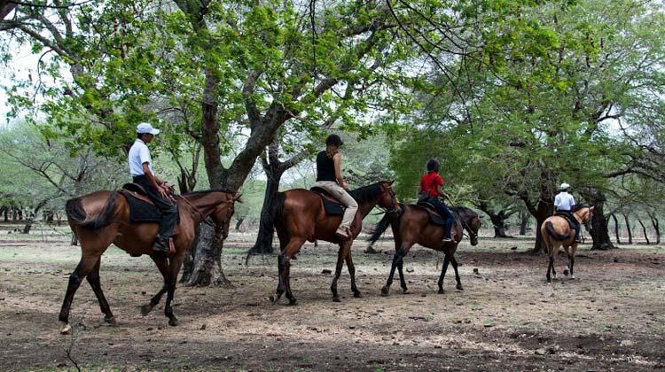 Casela Horse Riding